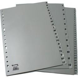 XS Separador Folio Ecologico Abecedario multitaladro gris